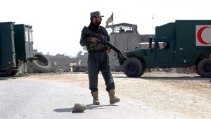 Afghan forces, US service member killed in Taliban attacks