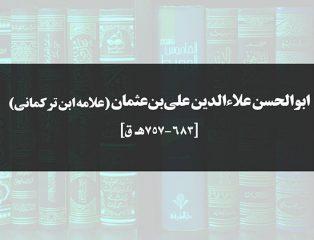 علامه ابن ترکمانی، جامعالعلوم و قاضی دیار مصر