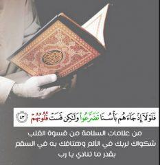 در روزهای جدال با کرونا و تلاش برای بقا؛ قرآن چه میگوید؟