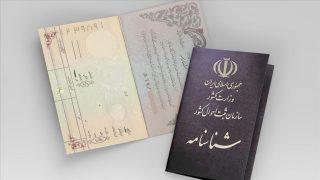 ذوالفقاری: بیش از ۸۰ هزار فرزند مادر ایرانی متقاضی تابعیت هستند