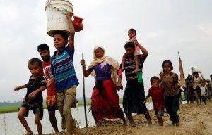 روہنگیا پناہ گزین اور ہندوستانی حکومت