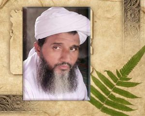 مولانا فتح اللہ کے انتقال پر شیخ الاسلام مولانا عبدالحمید کا تعزیتی پیغام