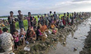 بنگلہ دیش سے روہنگیا مسلمانوں کی 'جبراً واپسی' روکنے کا مطالبہ