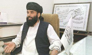 افغانستان میں تنہا حکمرانی کے خواشمند نہیں، طالبان