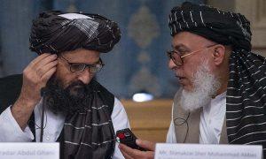صدر ٹرمپ کی مذاکرات بحالی کی پیشکش پر سوچ کر جواب دیں گے، طالبان