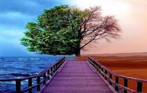 مؤمن اور منافق کی آزمائش میں فرق